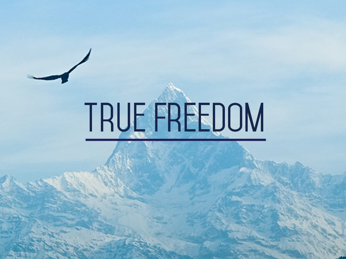 Growing in Freedom – Renewal Ministries